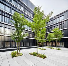 © extra Landschaftsarchitekten- Mobiliar, Bern, 2015