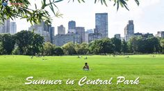 Summer is the perfect time to wander through Central Park! Enjoy the great weather on a boat or enjoy the beautiful skyline views! Sight & Sound, City Streets, Central Park, All Over The World, Wander, New York City, Summertime, Dolores Park, Skyline