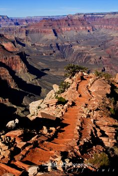 Then What? by Jeff Lewis; South Kaibab Trail, Grand Canyon National Park