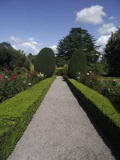 Altamont Gardens, Co. Carlow, Ireland - 100 acres of gardens, woodland, lakes and waterfalls