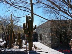 Ruinas de los indios Quilmes I - Valles calchaquíes, Tucumán