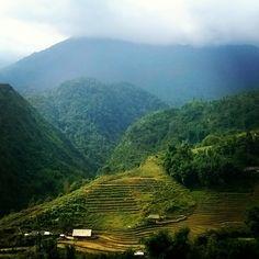 Hiking in Sapa, Vietnam Sa Pa, Mountain S, Southeast Asia, Trekking, Vietnam, Hiking, River, Explore, Green