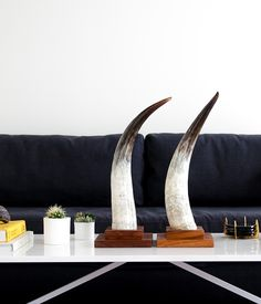 Rose & Fitzgerald — Cow Horn Decorative Object - Square Base