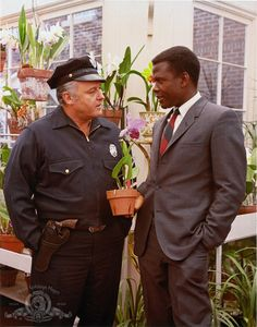 Pictures & Photos of Sidney Poitier - IMDb.       In the Heat of the Night // Rod Steiger