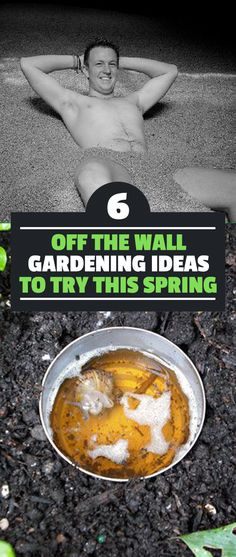 These six goofy and bizarre gardening ideas might be just what you need this spring to kickstart your gardening hobby.