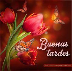 """Buenas Tardes!!! Todos los miembros de administración del Grupo """"Poetas Del Corazón"""" se siente muy honrado y agradecido a las poetisas y poetas que con >> https://www.facebook.com/permalink.php?story_fbid=568448729986923&id=100004654036138"""