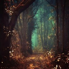 Oh to Walk Upon Autumns Gold Gown...Magic is Afoot