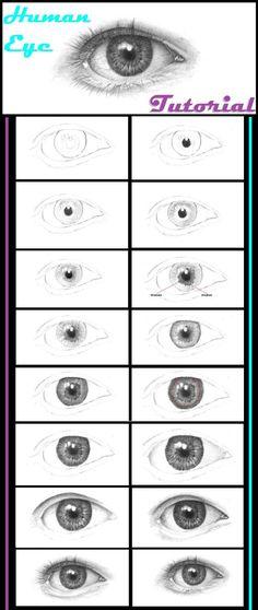 Eye Drawing Tutorials, Drawing Techniques, Art Tutorials, Painting Tutorials, Drawing Lessons, Drawing Tips, Painting & Drawing, Drawing Drawing, Figure Drawing