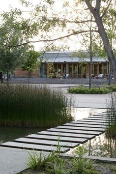 Image result for gap between stepping stones in pond landscaping architect