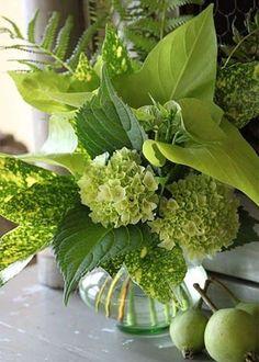 Green Hydrangea arrangement - Become your own florist Create luscious flower arrangements at home. Ikebana, Garden Types, Garden Paths, Fresh Flowers, Beautiful Flowers, Exotic Flowers, Purple Flowers, Wild Flowers, Hortensien Arrangements