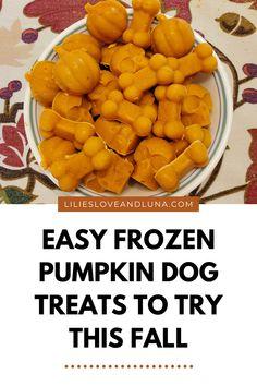 Easy two-ingredient and three-ingredient frozen pumpkin dog treats. Easy Treats To Make, Dog Ice Cream, Frozen Dog Treats, Frozen Pumpkin, Pumpkin Dog Treats, Plain Greek Yogurt, Dog Treat Recipes, Lilies, Sweet Potato