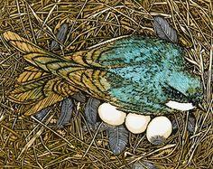 Raising Swallows Fine Art Linocut Relief Print, Original Art, x subdued Woodland Color, Nest Box, Tree Swallow conservation Woodcut Art, Linocut Prints, Arches Paper, Print Artist, Bird Art, Painting & Drawing, Printmaking, Original Art, Illustration Art