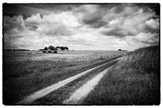 Vintage Landscape Ruegen Altkamp, Germany