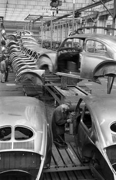 Beetle Factory