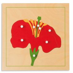 Shop Botany Puzzle: Flower at Nienhuis Montessori USA ✓ Official USA webshop ✓ AMI approved ✓ year experience ✓ Personal service Montessori Classroom, Montessori Toddler, Maria Montessori, Parts Of A Flower, Parts Of A Plant, Sand Writing, Montessori Materials, Wooden Puzzles, Trees To Plant