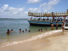 Swimming in Brasil