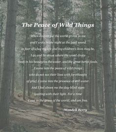 """The Peace of Wild Things"" - Wendell Berry [1797 × 2047] [OC]"