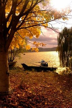 autumn fall scene by the lake, beautiful fall outdoors inspiration Beautiful World, Beautiful Places, Beautiful Pictures, Autumn Scenes, Seasons Of The Year, Lake Life, Belle Photo, The Great Outdoors, Autumn Leaves