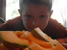 Breakfast, Lunch, Snack, and Dinner ideas for the Homeschooling Family