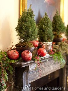 Dwarf Alberta Spruce, mixture of greens and berries, and sugared pomegranates (Courtesy, Better Homes and Gardens)