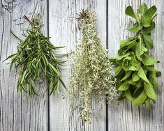 Learn the Basics of Magical Herbs: 10 Magical Herbs to Have on Hand