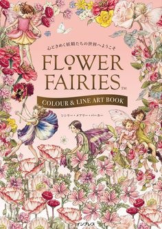 The 145 Best Flower Fairies Images On Pinterest