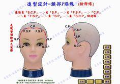 Blogger-黃思恒數位化美髮資訊平台: 頭部7條基準線-臉際線(數位構圖互動程式製作及影片)