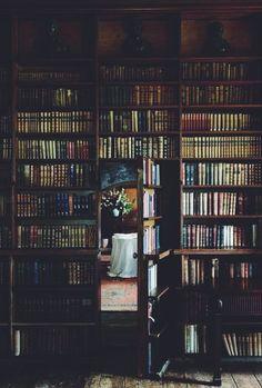 a book wall a book door! A secret passageway
