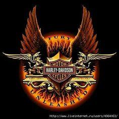 Harley Davidson News – Harley Davidson Bike Pics Harley Davidson Logo, Harley Davidson Seats, Harley Davidson Kunst, Harley Davidson Kleidung, Harley Davidson Scrambler, Harley Davidson Merchandise, Harley Davidson Pictures, Harley Davidson Tattoos, Harley Davidson Wallpaper