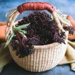 Lemon Balm Recipes, Sage Recipes, Herb Recipes, Elderberry Recipes, Elderberry Syrup, Kosher Dill Pickles, Dandelion Plant, Mead Recipe, Mint Shampoo