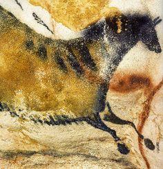 Lascaux cave painting, photo by John Heffernan Ancient Art, Ancient History, Art History, Lascaux Cave Paintings, Art Pariétal, Paleolithic Art, Cave Drawings, Dordogne, Tempera
