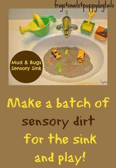 Mud and Bugs {Sensory Sink}