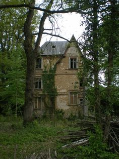 Lost in the forest, abandoned mansion in France. [OS] [768×1024].