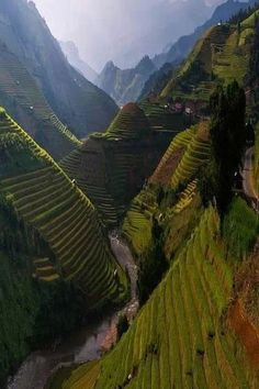 Rice Terraces in China. Wow