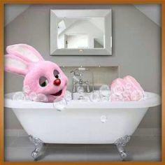 Duracel bunny
