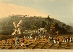 US Slave: Antigua and Barbuda Water Island, St Vincent Grenadines, Kingston Jamaica, East Indies, His Travel, Island Life, Barbados, 16th Century, Great Britain