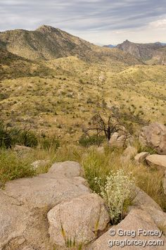 Mount Lemmon outside Tucson, AZ
