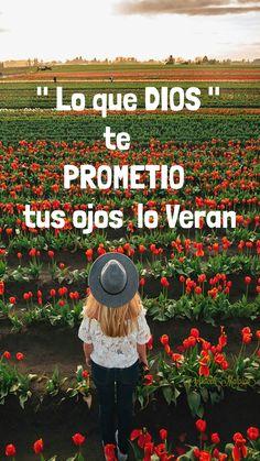 ARACELI MALPICA- Posters : LAS PROMESAS DE DIOS