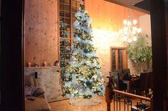 Sapin Christmas Tree, Holiday Decor, Home Decor, Fir Tree, Teal Christmas Tree, Xmas Tree, Christmas Trees, Home Interior Design, Decoration Home