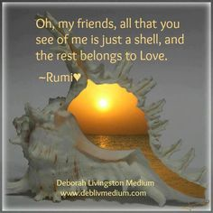 Oh, my friends, all that you see of me is just a shell, and the rest belongs to Love.  -Rumi