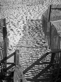 Shadows in the Sand Photograph  - Shadows in the Sand Fine Art Print