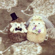 宣言通りハリちゃんのぬいぐるみをデコってウェルカムドール完成しました〜! 縫ったりグルーガンで付けたり、楽しかったです! #hedgehog#ハリネズミ#ウェディング#wedding#weddingdoll#ウェルカムドール#手作り#4月挙式