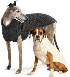 Wool Dog Sweater - Gray - Modeled on Greyhound and Boxer