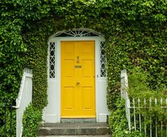 Discover the Best Feng Shui Colors for a Northeast Front Door Georgian Irish Front Door with ivy surrounding it. The post Discover the Best Feng Shui Colors for a Northeast Front Door appeared first on Farah& Secret World. Yellow Front Doors, Best Front Doors, Front Door Paint Colors, Front Door Entrance, Painted Front Doors, Front Door Design, The Doors, Glass Front Door, House Entrance