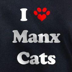 black cats Photo: I Manx Cats Manx Kittens, Manx Cat, Cats And Kittens, Kitty Cats, Crazy Cat Lady, Crazy Cats, White Tabby Cat, Black Cats, Diy Cat Enclosure