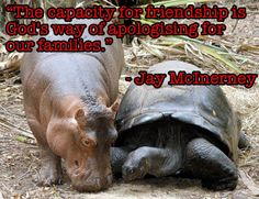 Friendship Quotes , Nice n Funny
