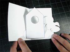 How to Make a Bird House Pop up Card