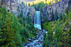 19 Most Beautiful Places to Visit in Oregon - Page 4 of 19 - The Crazy Tourist Oregon Camping, Oregon Road Trip, Oregon Trail, Oregon Coast, Beautiful Places To Visit, Places To See, Boardman State Park, West Coast Road Trip, Picnic In The Park