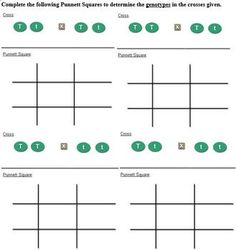 chapter 25 crosses involving multiple alleles worksheet answers 1000 ideas about sex linkage. Black Bedroom Furniture Sets. Home Design Ideas