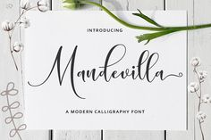 Mandevilla Script (Font) by Zane Studio · Creative Fabrica Handwritten Fonts, Calligraphy Fonts, Script Fonts, Typography Fonts, All Fonts, Hand Lettering, Microsoft Word 2010, Handwriting Styles, Retro Font